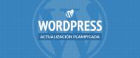 Actualización automática WordPress