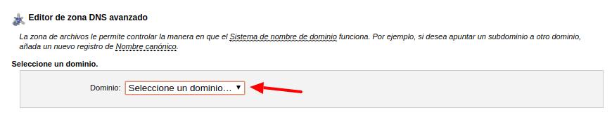 Editar DNS dominio hosting cPanel - Servicios Online