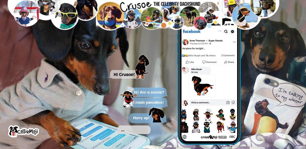 Crusoe App